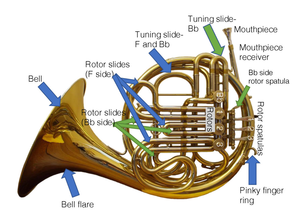 Parts of a double horn
