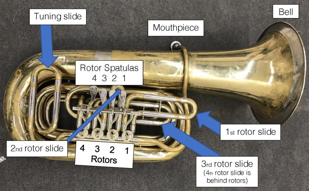 Rotor tuba anatomy
